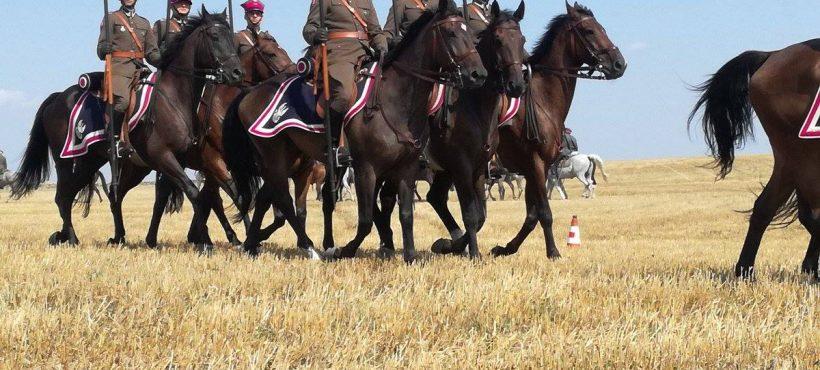 Święto Kawalerii wKomarowie 27 sierpnia